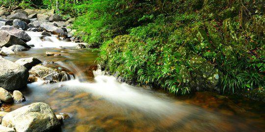 Ilustrasi gambar https://m.merdeka.com/jateng/8-manfaat-sungai-bagi-kehidupan-manusia-wajib-diketahui-kln.html