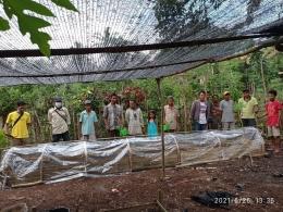 Foto : Lokasi pusat pembibitan Cendana di Desa Umalulu, Sumba Timur/dokpri