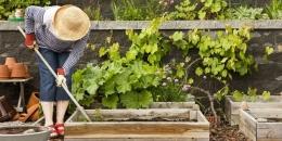 Merawat kebun idealnya dimulai dari diri sendiri lalu dibantu orang lain setelah terus berkembang (Ilustrasi: countryliving.com)