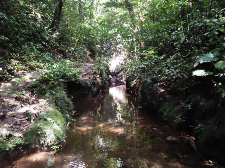 Ilustrasi sungai penuh kenangan pada masa kecilku (Dokpri)