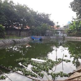 Satu diantara 3 kolam penghasil ikan dan Keong (dok pri)