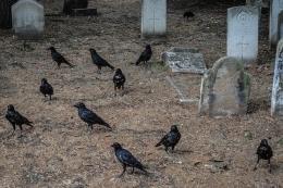 Ilustrasi Pemakaman di London (sumber gambar: pixabay.com)