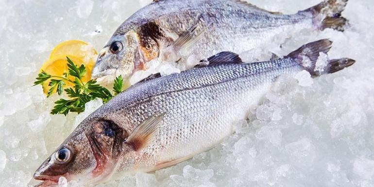 Sebuah contoh gambar ikan yang di taruh di atas pecahan es batu agar tahan lama (source: sehatq.com / hidup sehat by Annisa Amalia Ikhsania)