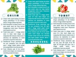 Video dan leaflet penjelasan budidaya sayuran dengan teknik vertikultur (dokpri)