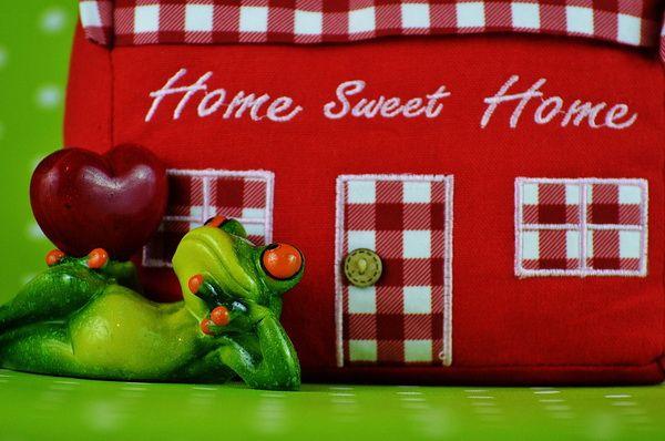 Ilustrasi rumah sendiri lebih nyaman (sumber: pixabay.com/Alexas)