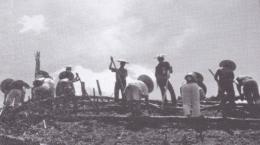 Keterangan gambar 5: menugal/menanam padi adalah salah satu bentuk gotong royong masyarakat kesukuan yang masih tetap lestari hingga saat ini (Dokumentasi By: Raffaele Algenii)