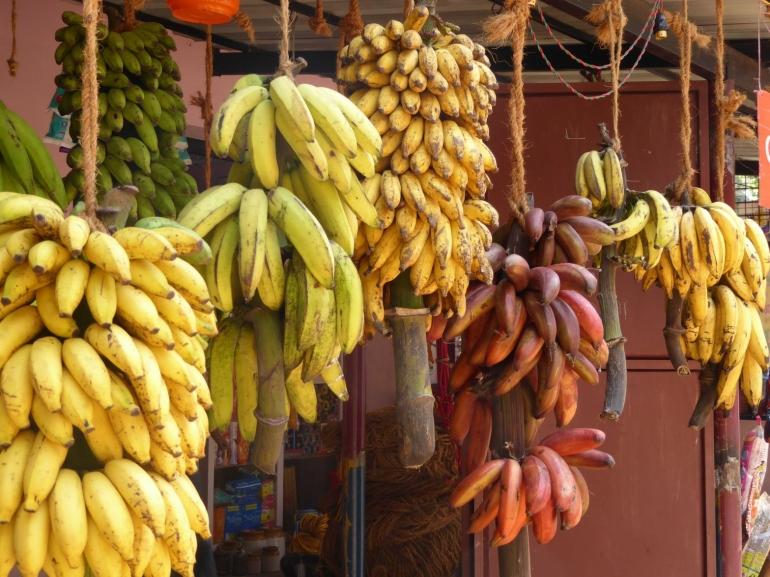 Menurut ilmu pengetahuan modern, buah surgawi bernama pisang ini memiliki banyak kandungan zat yang bermanfaat bagi kesehatan manusia (unsplash.com)