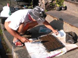 Mengisi tray dengan tanah humus. (dokumen pribadi)