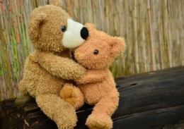 Pelukan sayang (sumber: pixabay.com/congerdesign)