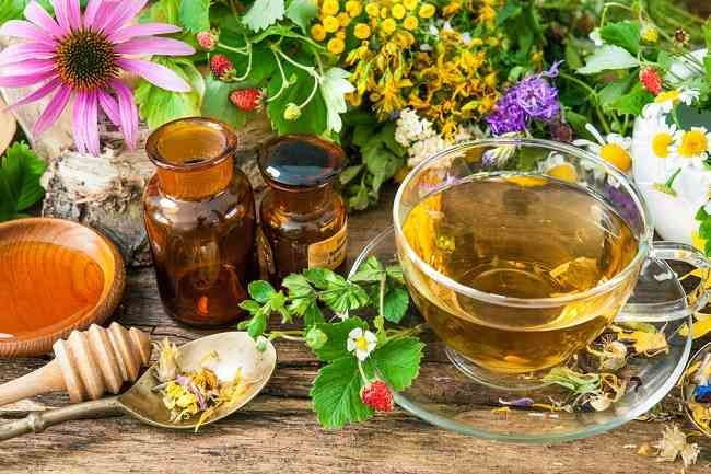 Herbal (sumbrr: alodokter.com)