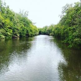 Ilustrasi Sungai Loloda di Halmahera Utara. Sumber: Dokumen Pribadi