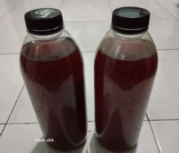 Pupuk cair buatan sendiri dari sisa kulit buah dan sayur. (dokumentasi pribadi)