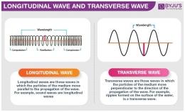 Perbedaan gelombang longitudinal dan gelombang transversal. Sumber: https://cdn1.byjus.com/