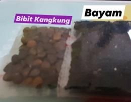 Dokpri: aneka biji-bijian yang dijual eceran