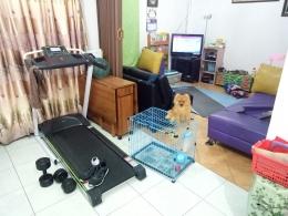 Alat Treadmill dan dumbell bisa menjadi alternatif olahraga di rumah (Foto: Dokumen Pribadi).