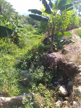 Gambar 3. Terkikisnya tanah di sisi Sungai Bodas akibat erosi (dokumentasi pribadi)