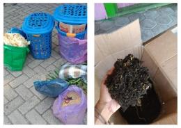 Bahan pembuatan kompos metode takakura dan contoh produk kompos yang telah jadi (Dokpri)