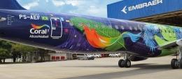 Coating pesawat dari AkzoNobel, salah satu pabrikan cat pesawat terbesar di dunia. Sumber: www.aerospace.akzonobel.com