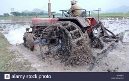 Petani mengemudikan traktor di ladang berlumpur. Sumber: https://www.alamy.com/