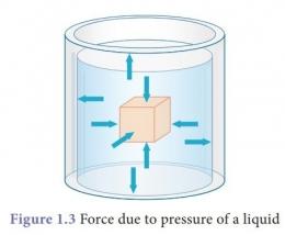 Berbagai arah tekanan cairan. Sumber:brainkart.com