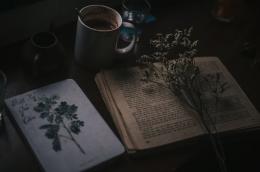 ilustrasi buku kumpulan sajak | photo by Sheep from pexels