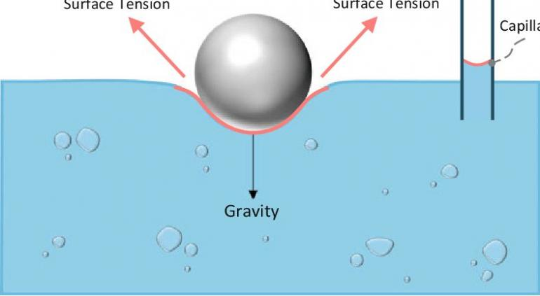 Tegangan permukaan cairan. Sumber: https://www.researchgate.net/figure/The-ramifications-of-surface-energy-in-the-form-of-surface-tension-are-well-known-from_fig1_331025219