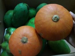 Mangga dan Labu Jepang sama-sama enak | dokpri