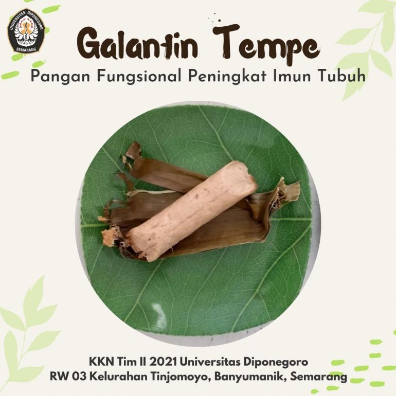 Produk Galantin Tempe - Sumber: Arina Alfania (Dokumentasi Pribadi)