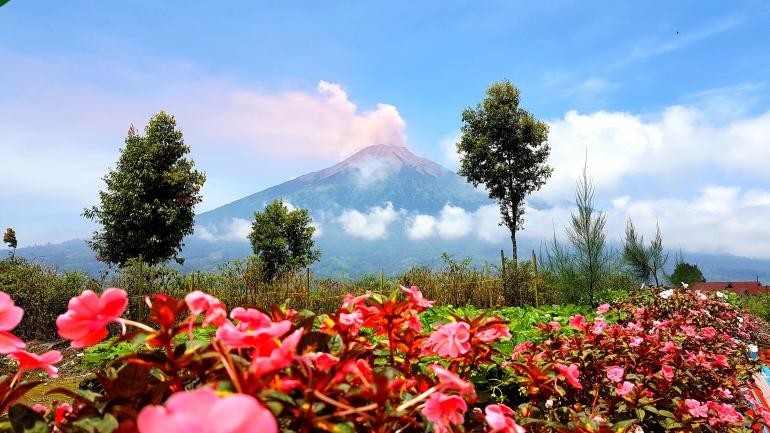 Gunung Kerinci (Dokumentasi Pribadi)