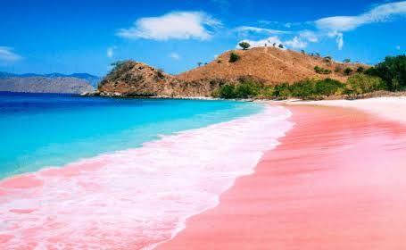Pantai Pink (sumber: panduasia.com)