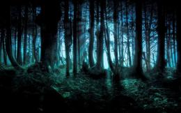 Nero tak nampak dan hutan di depan nampak tak ramah | sumber gambar: Pinterest/Imgur