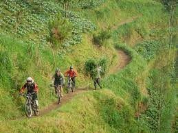 Downhill di bukit turgo sumber : jogjakita.co.id
