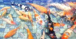 Ikan koi berbagai warna, beberapa adalah ikan komet punya si bungsu (Foto : dokpri MomAbel)