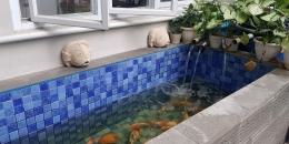 Kolam tempat kami memelihara ikan koi (Foto : dokpri MomAbel)
