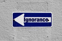 Pengakuan akan ketidaktahuan merupakan pembuka gerbang menuju pengetahuan | Ilustrasi oleh Gerd Altmann via Pixabay