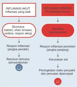 Inflamasi Akut vs Inflamasi Kronis. Diadaptasi dari: The Anti-inflammatory Plan, 1st Ed., hlm. 13.