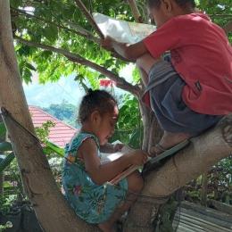 Putriku, Deogratia Quinozha Dhiru sedang membaca di atas pohon kersen. Foto: Ermelinda Sato