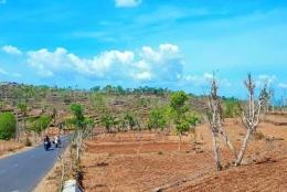 Salah satu wilayah di Jawa Timur, tepatnya Madura-Sumenep yang mengalami kekeringan, gambar: radarmadura.id