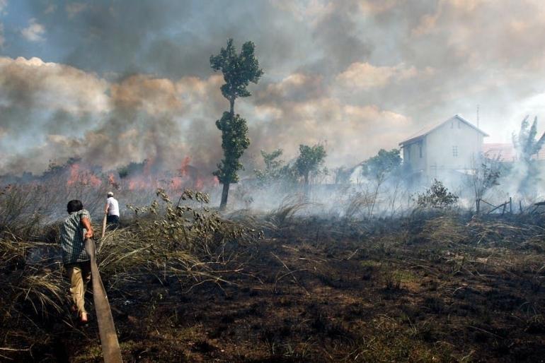 Foto : The Conversation (Ilustrasi kebakaran lahan hutan)