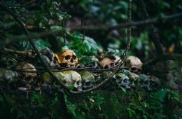 Suku Sentinel, Peradaban yang Hilang dari Pandangan (guideku.com)
