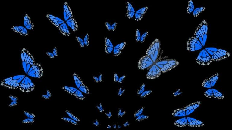 ilustrasi pixabay.com