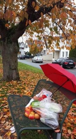 Belanja jalan kaki di musim gugur/dokumentasi pribadi