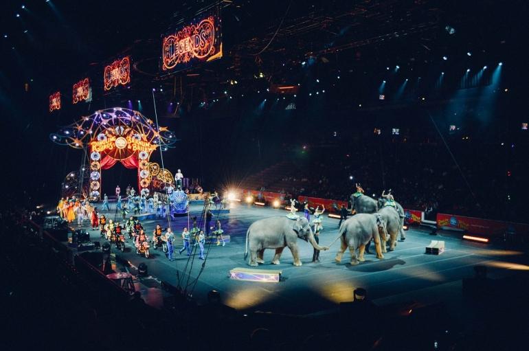Ilustrasi suasana pertunjukan sirkus (Foto: Free-Photos Via Pixabay)