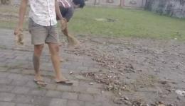 Ribuan burung pitit mati berjatuhan di pulau Dewata   ilustrasi : Bali.inews.com