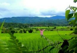Hamparan Sawah di Tangse, menuju Aceh Barat, Meulaboh via Geumpang.dok.M.Fadhil.2020