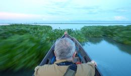 Pagi hari, membelah kerumunan eceng gondok di Danau Tempe. (@Hanom Bashari)