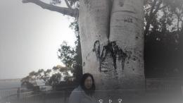 Berfoto di bawah pohon Boab yang beumur lebih dari 750 tahun (Dok Pribadi)