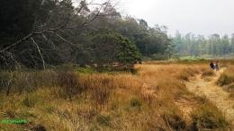Padang rumput berlatar Telaga Pengilon Dieng (dokpri)