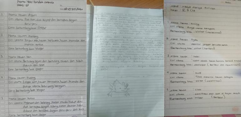 Gambar 1. Tugas Kegiatan