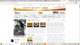 Halaman Website Sina.com